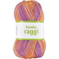 bambu raggi - 17203 -